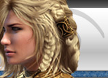Guild Wars GW Bots
